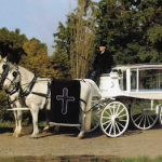 White Horse Hearse Carriage
